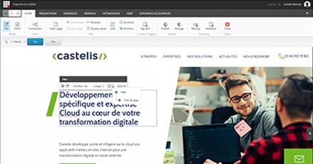 Sitecore experience editor castelis